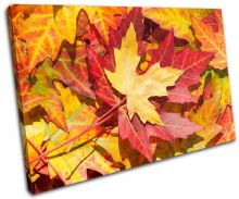 Autumn Leaves Floral - 13-1140(00B)-SG32-LO